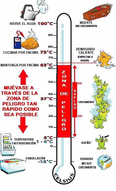 rango de temperatura para bacterias